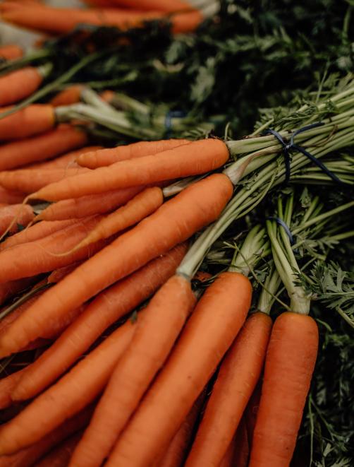 carottes fraiches